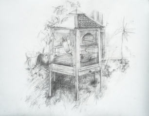 Harriet and Fluffy's hutch, 2013, pencil on paper, 57 cm. x 76 cm.